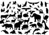 Fauna. — Stockvector