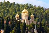 Russische orthodoxe Kloster Gorny — Stockfoto