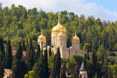 Gorny Russian Orthodox convent — Stock Photo