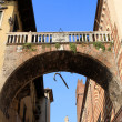 Stock Photo: The arch of the Rib, Verona