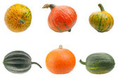 Colourful pumpkins isolated on white background. — Stock Photo