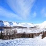 Tundra landscape — Stock Photo