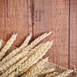 Golden wheat — Stock Photo #6891552