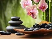έννοια του spa — Φωτογραφία Αρχείου