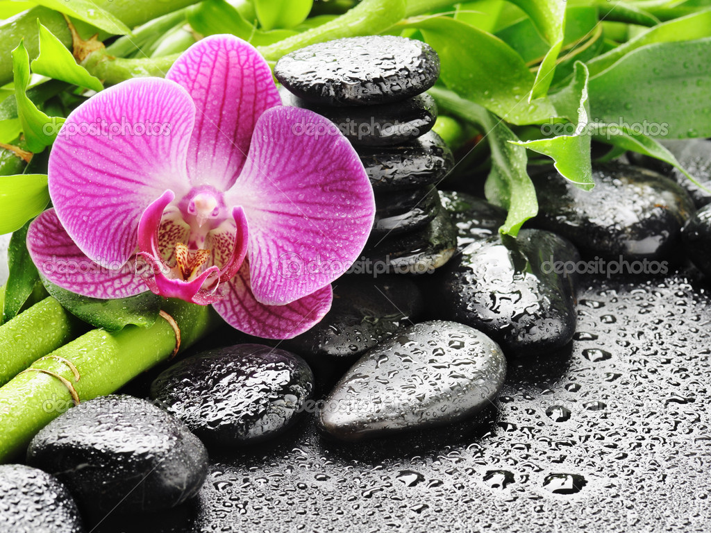 Spa concept with zen stones and orchid — Stockfoto #6891528