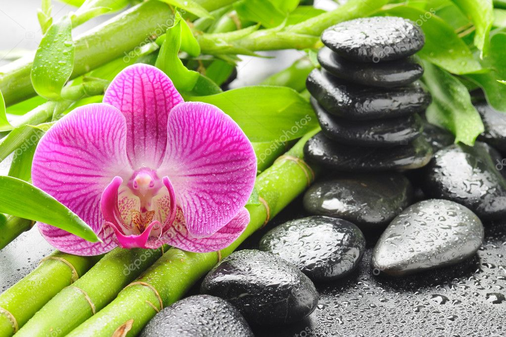 Spa concept with zen stones and orchid — Stok fotoğraf #6891543
