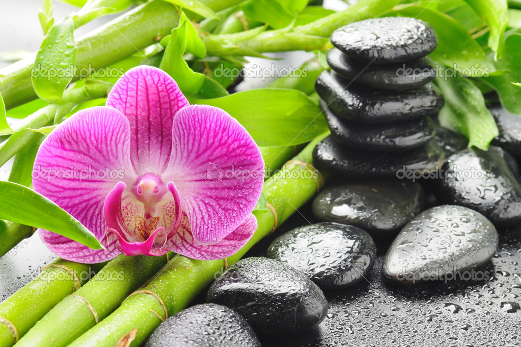 Spa concept with zen stones and orchid  Lizenzfreies Foto #6891543