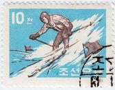 KOREA sportsman skier — Stock Photo