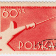 Poland shows fencer — Stock Photo