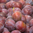 Plums. — Stock Photo
