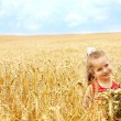 Kid in wheat field. — Stock Photo