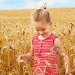 Kid in wheat field. — Stock Photo #7110580