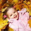 Kid in autumn orange leaves. - Stock Photo