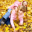 Kid in autumn orange leaves. — Stock Photo