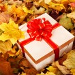 Gift box in fall foliage. - Stock Photo