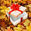 Gift box in fall foliage. — Stock Photo