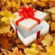Gift box in fall foliage. — Stock Photo