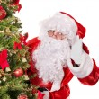 Santa claus by christmas tree. — Stock Photo #7846660