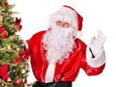 Papá noel por el árbol de navidad. — Foto de Stock