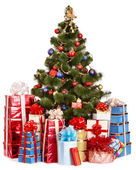 Christmas tree and group gift box. — Stock Photo