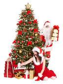 クリスマスの女の子、ギフト ボックス グループとサンタ句とモミの木. — ストック写真