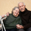 Stock Photo: Happy senior couple