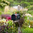 US mailbox with flag raised in flowers — Stock Photo