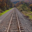Railway tracks recede into distance — Stock Photo #7347292