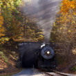 Steam locomotive leaving tunnel — Stock Photo