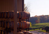 Wine barrels stacked in winery — Stock Photo