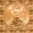 Single Liberty gold coin — Lizenzfreies Foto