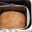 Wheat bread baked in machine — Stock Photo