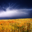 Thunderstorm — Stock Photo #6861760