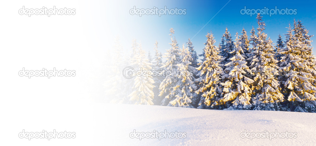 A frosty and sunny day is in mountains  Stock Photo #6861594