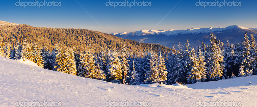 A frosty and sunny day is in mountains — Stock Photo #6861603