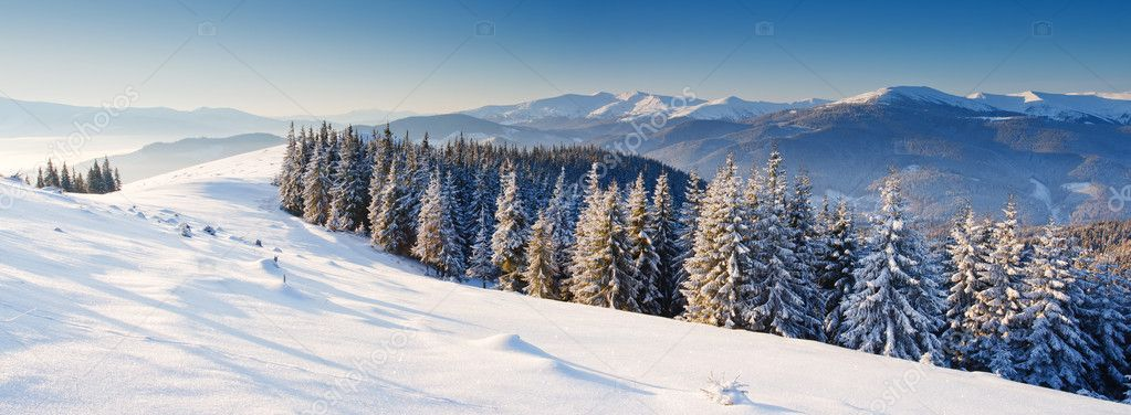 Trees covered with hoarfrost and snow in mountains. — Stock Photo #6861621