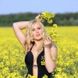 Beautiful young blonde woman in a field of wildflowers. — Stock Photo #6788178