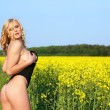 Beautiful young blonde woman in a field of wildflowers. — Stock Photo #6789415