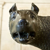 Romulus and remus rome symbol — Stock Photo