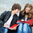 Two smiling young students studying outdoors — Stock Photo #7147383