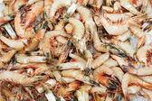 čerstvé mražené mořské krevety — Stock fotografie