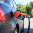 Refueling nozzle in the tank black car at fuel filling column. Summer day.  — Stock Photo