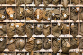 Background from folded gas masks in cells. Numbered and ready for use — Stock Photo