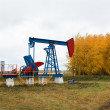 One pump jacks on a oil field. - Stock Photo
