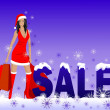 Stock Photo: Girl and Christmas sale