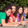 Stock Photo: Group of Teenage Girls at Park
