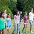 Stock Photo: Group of Teenagers at Park