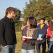 College Students Walking and Talking at Park — Stock Photo #7721668