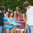 Multicultural Group of College Students — Stock Photo #7920999