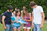 多元文化组的大学生 — 图库照片
